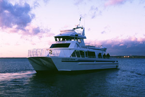 Condor Express Wedding Charter