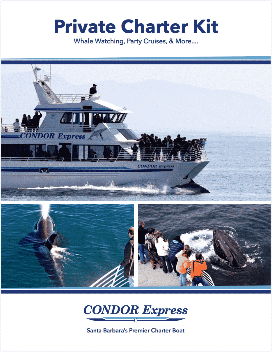 Condor Express Private Boat Charter Kit
