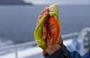 Condor Galley BLT Lettuce Wrap